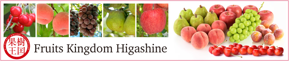 Fruits Kingdom Higashine